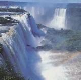 ブラジル滝